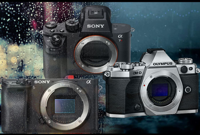 Top 3 Weatherproof Mirrorless Camera